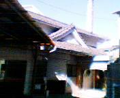 201001261046tsuru.jpg