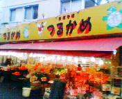 20100128tsurukame.jpg