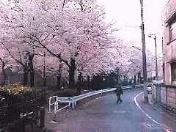 karasuryokudo.jpg